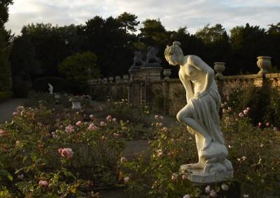 Italianate Rose Garden