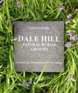 plaque in bluebells
